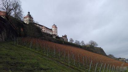 Festung Marienberg mit Weinberg
